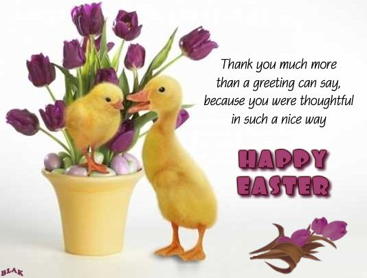 thank you for easter greetings