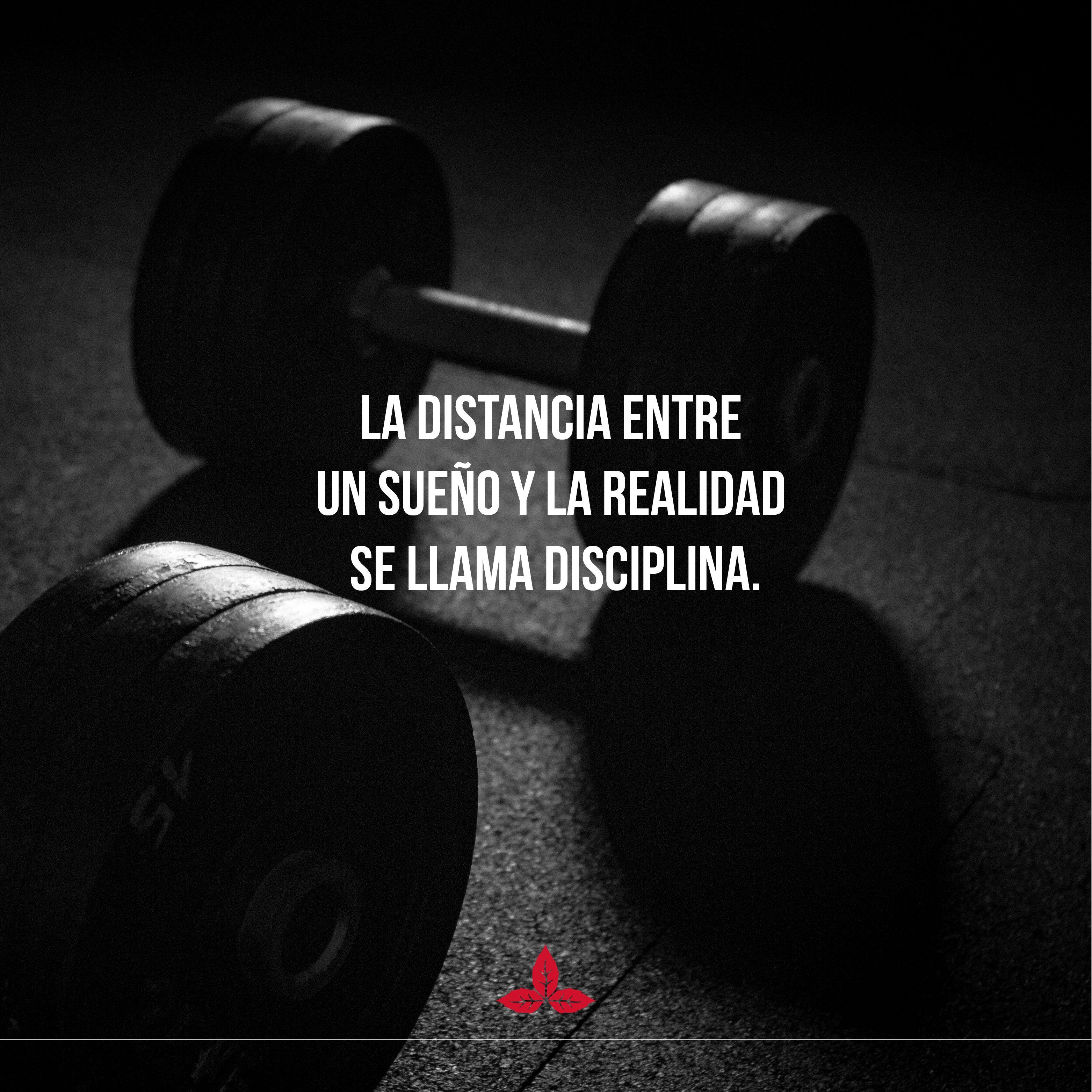 La disciplina es el único puente para llegar a la realidad de lo que quieres. Piensa en Determinación y Disciplina👈 #EdenJeans #Actitud #EdenLaRompe