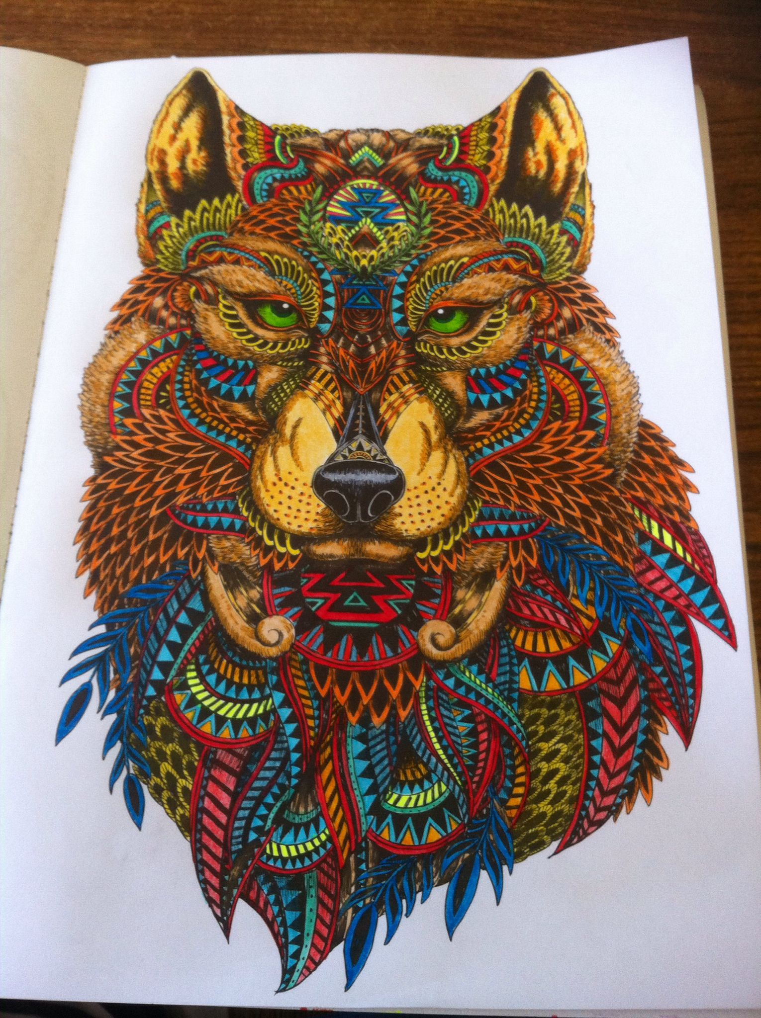 Wolf From Art Therapy Menagerie More Faber Castels Gel Pens And Crayola Pencils Gel Pen Art Wolf Colors Color Pencil Art