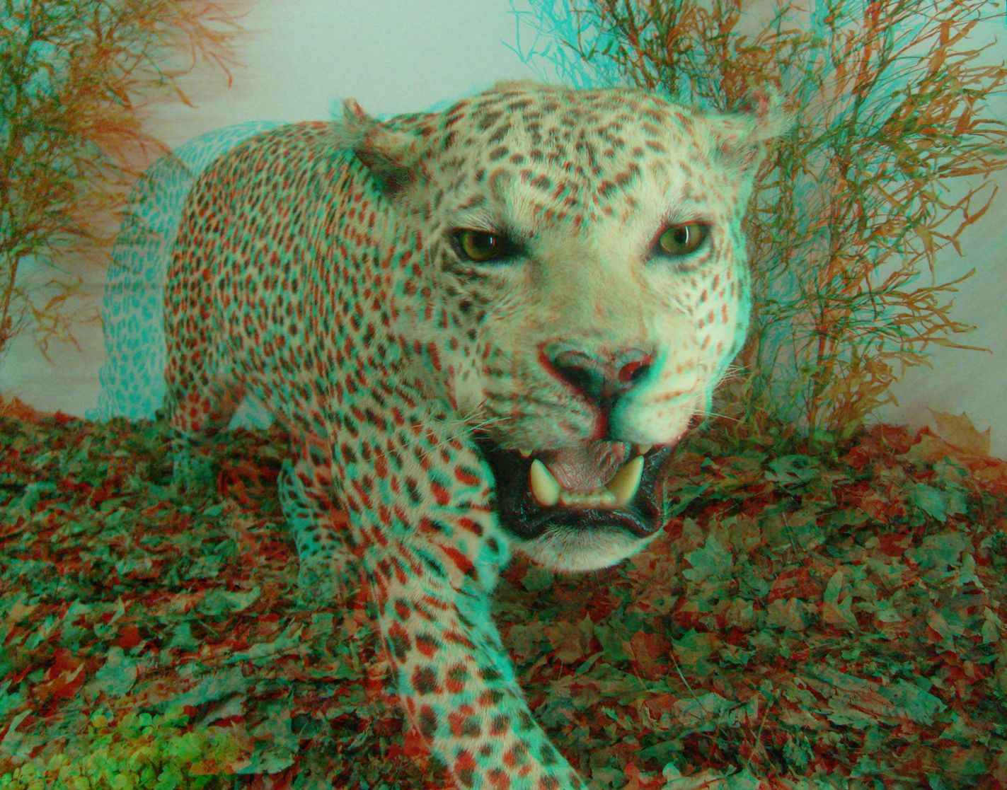 Puma 3d pictures projects to try pinterest puma 3d pictures voltagebd Image collections
