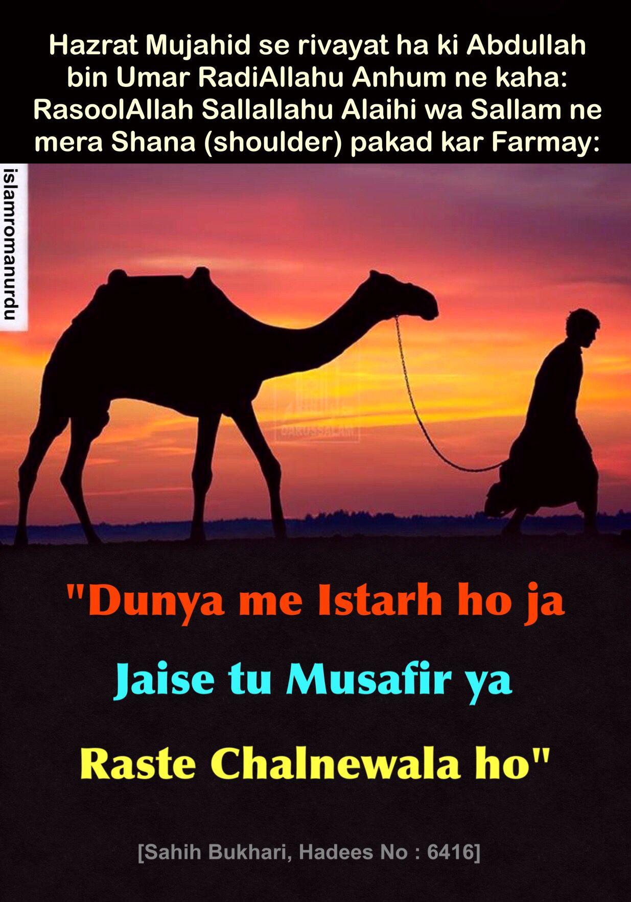 Hadis Nabi Muhammad Saw In Hindi - Gambar Islami