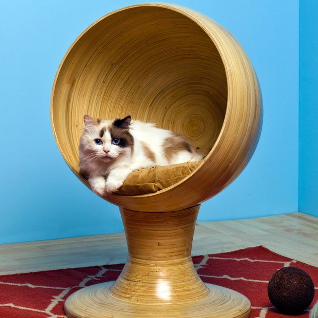 Kitty Ball Cat Bed From The Refined Feline Cat Bed Cat Furniture Modern Cat