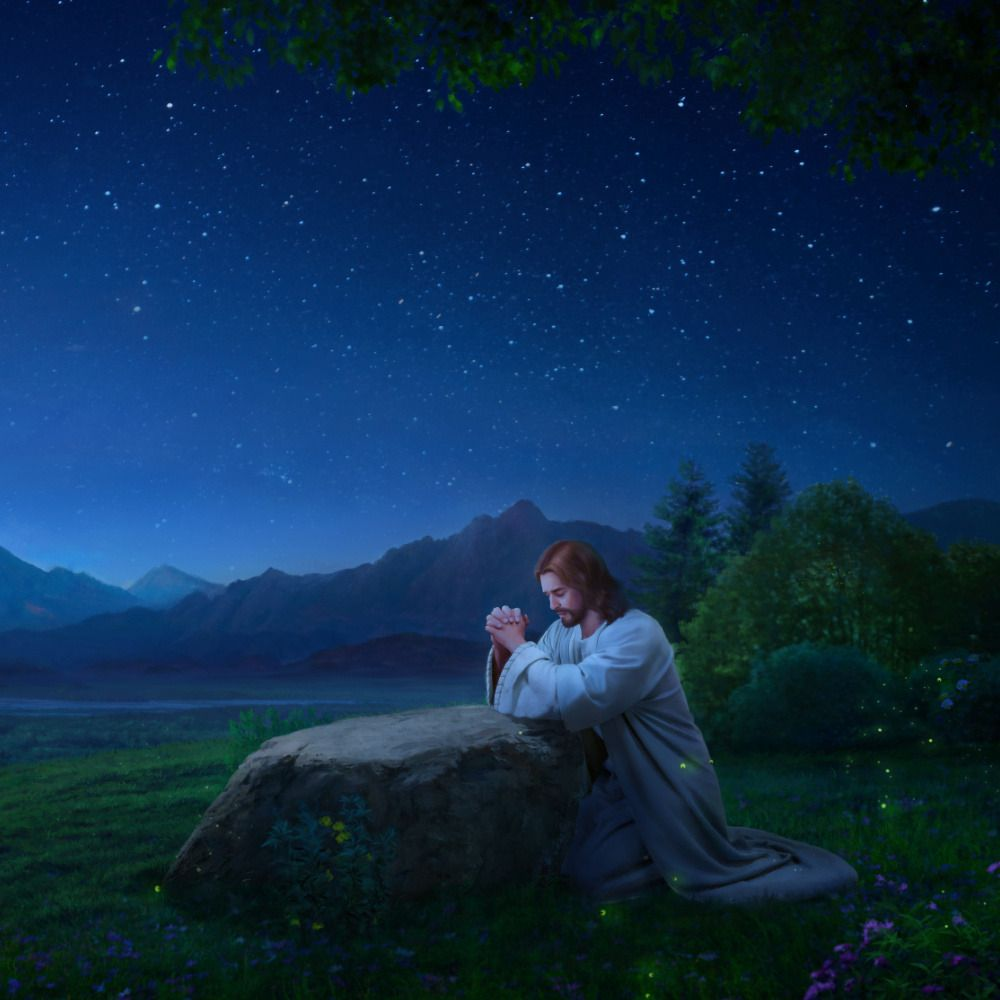 Jesus Betet Im Garten Gethsemane Matthaus 26 Jesus Bilder Christliche Bilder Jesus