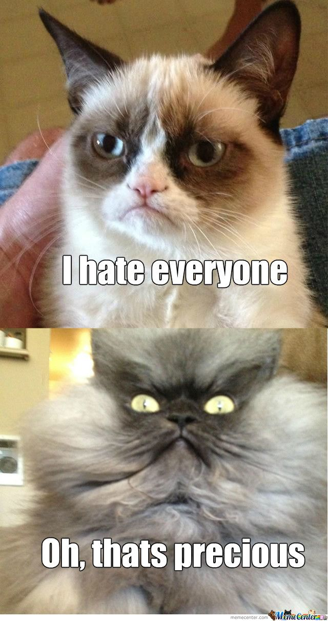 Colonel Meow Is Not Amused | Funny grumpy cat memes ...