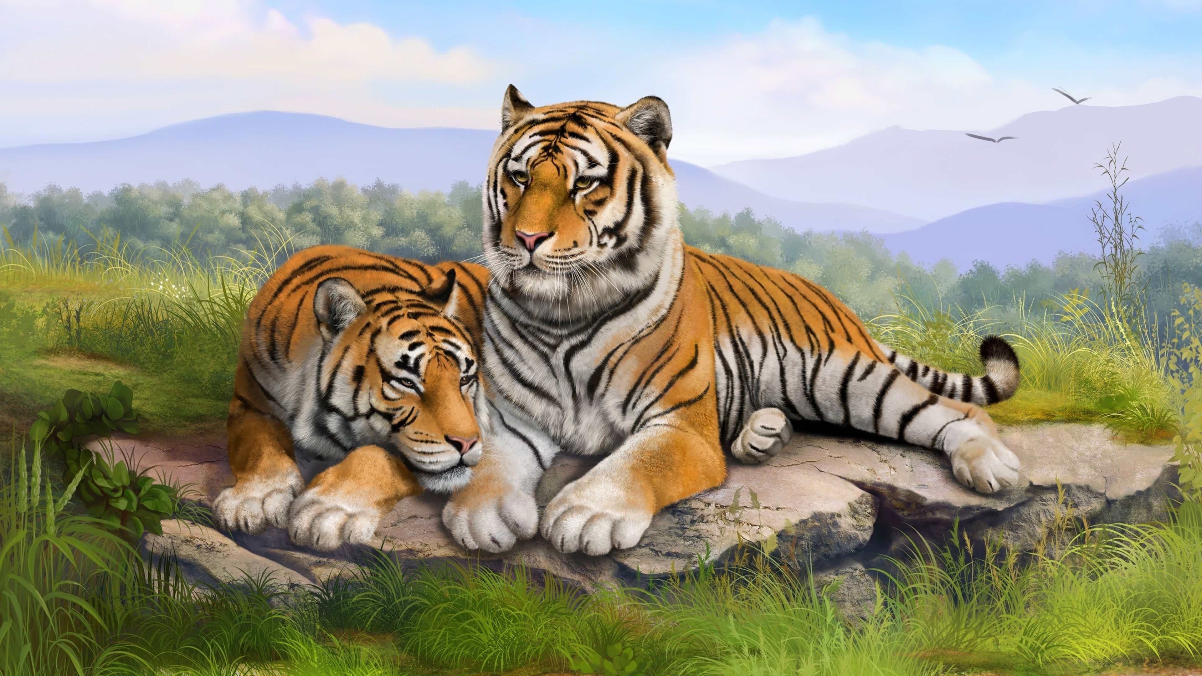 3840x2160 Tigers 4k Desktop Wallpapers Hd Free Download Tiger Art Wall Art Pictures Tiger Wallpaper