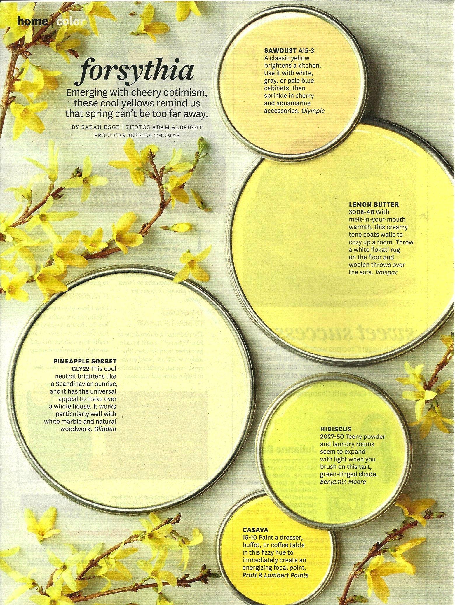 color palette forsythia colors in 2019 paint colors yellow rh pinterest com