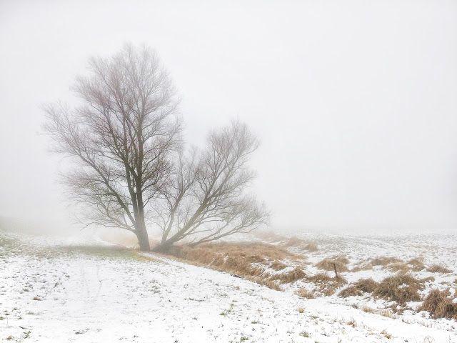 Claes`s Photo blog: winter lanscape