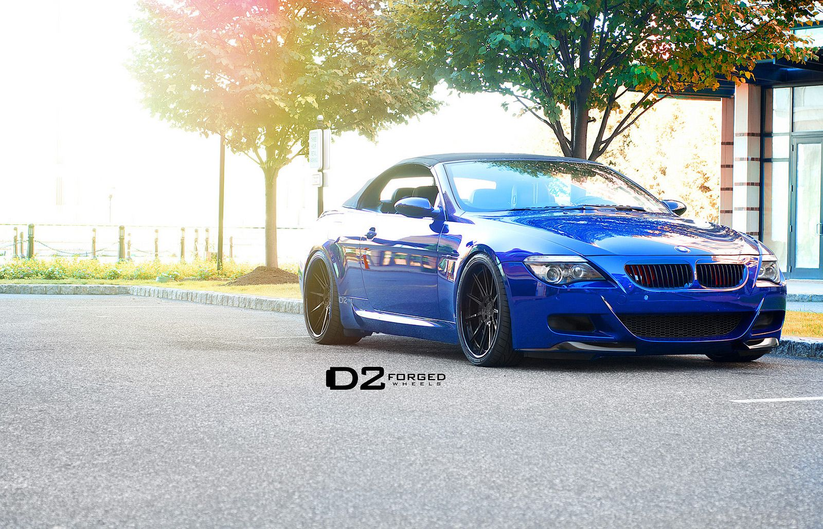 Bmw M6 With Images Bmw M6