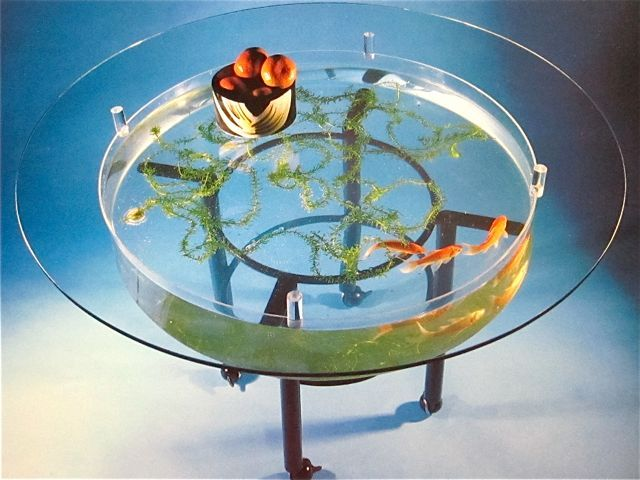 Goldfish coffee table Things Pinterest Goldfish