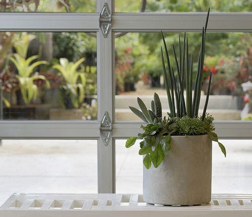 simple windowsill display.