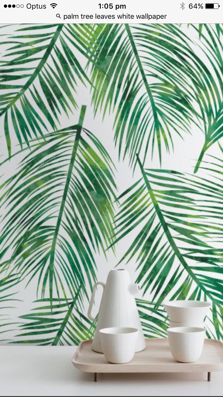 Pin By Ohood Alamary On Touring Palm Trees Wallpaper Green Leaf Wallpaper Palm Leaf Wallpaper