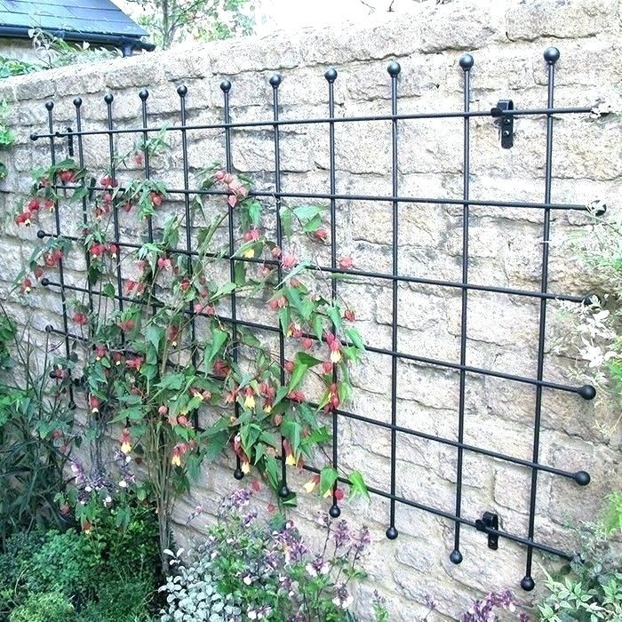 Garden Trellis Google Search Metal Garden Trellis Wall