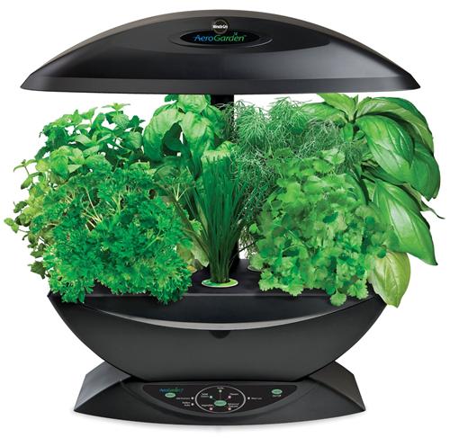 Aerogarden Indoor Herb Garden With Gourmet Seed Kit 99 400 x 300