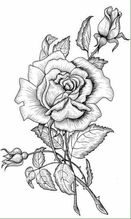 Coloring Pages Image By Dawn Royse On Adult Coloring Coloring
