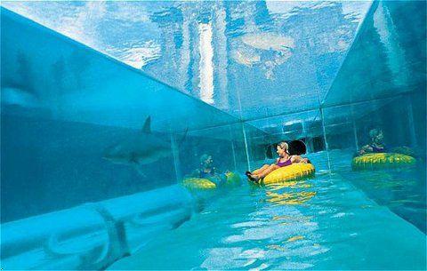 underwater part of atlantis water slide very cool picture