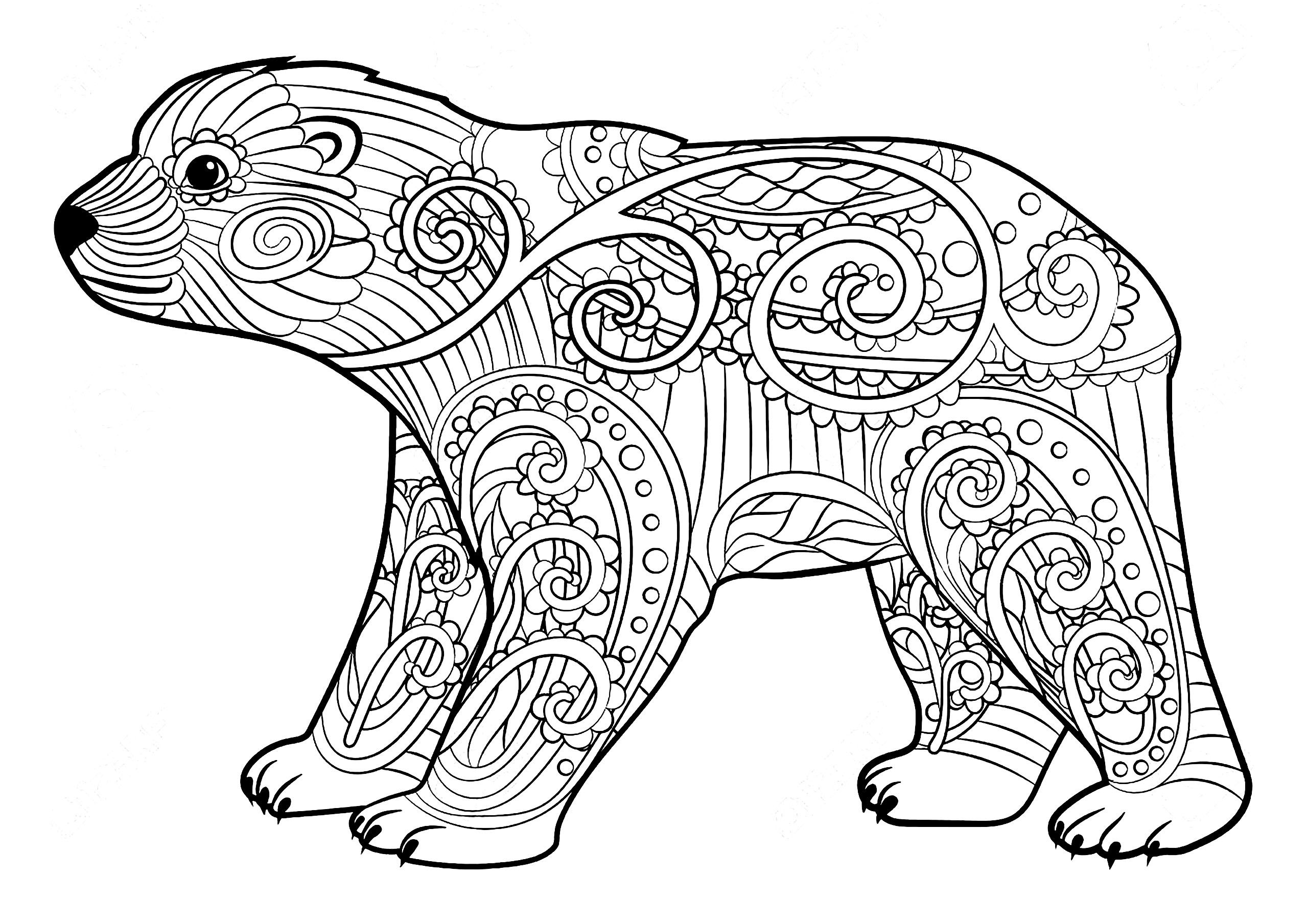 Young Bear Simple Coloring Page Of A Little Bear Full Of Nice Patterns From The Gallery Bear Bear Coloring Pages Bear Coloring Page Animal Coloring Pages