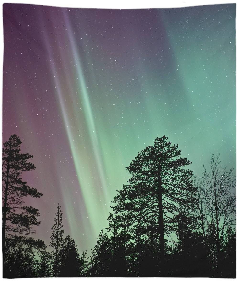 Aurora Borealis (Northern Lights) Trees Looking Up Sky