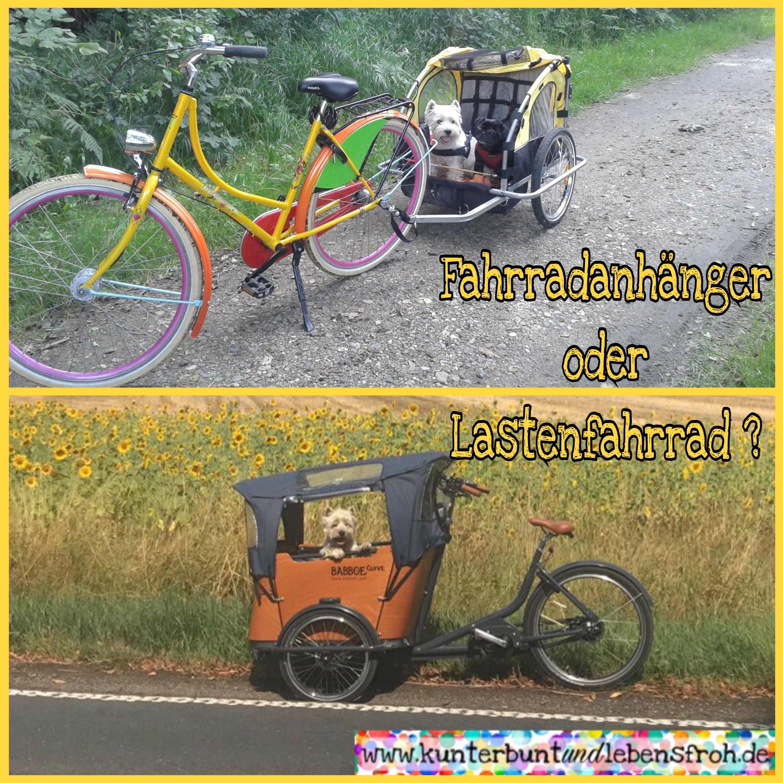 Fahrradanhanger Oder Lastenfahrrad Fur Den Kindertransport