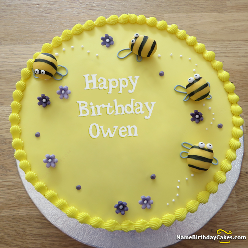 Happy Birthday Owen - Video And Images