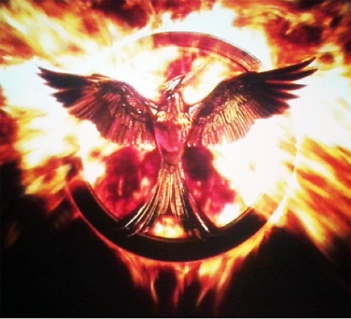 The Mockingjay Symbol I Don T Remember This From The Books But It Is At The End Of Catching Fire Hunger Games Hunger Games Mockingjay Hunger Games Problems