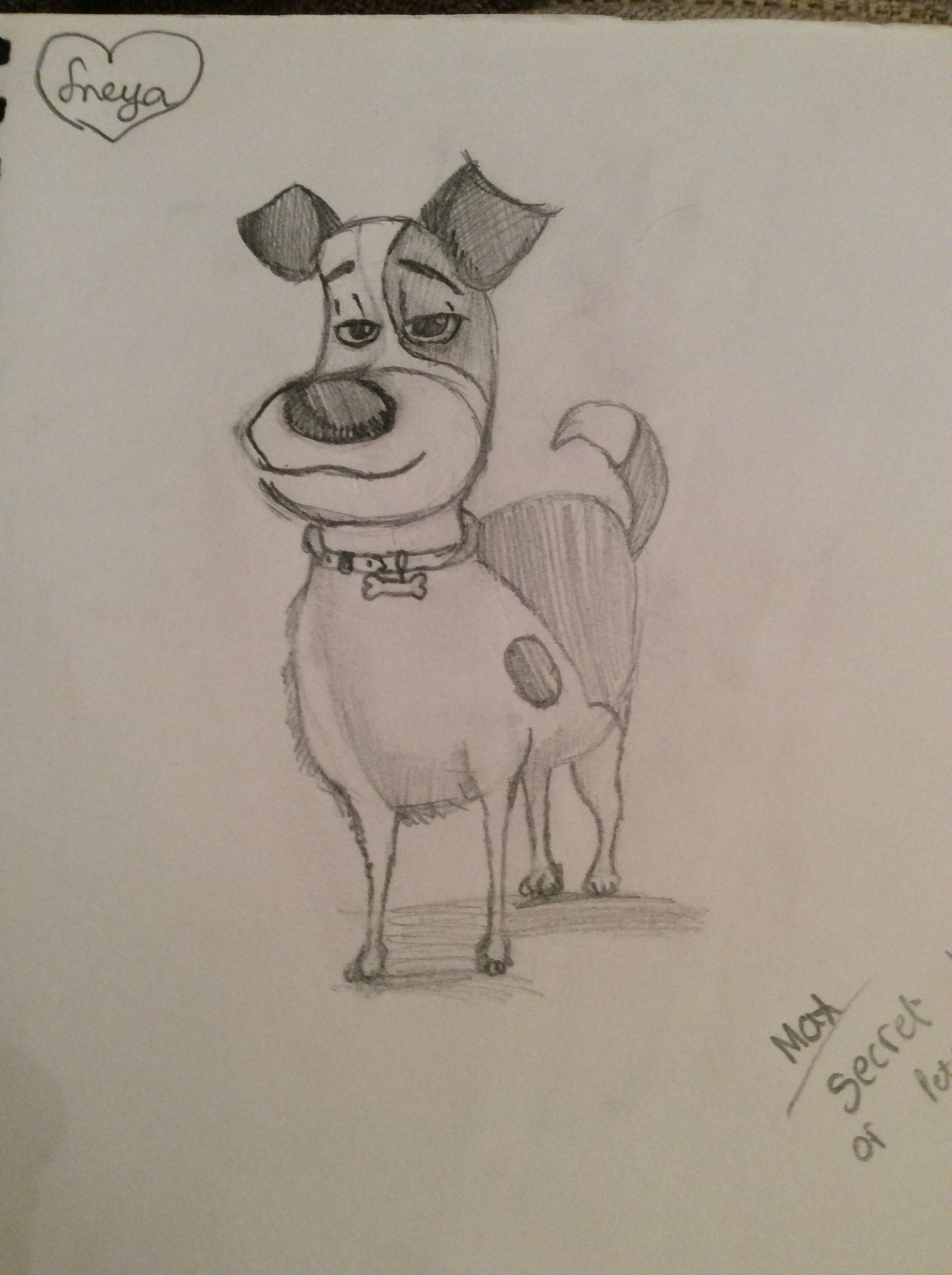 My Drawing Of Max The Dog Of Secret Life Of Pets