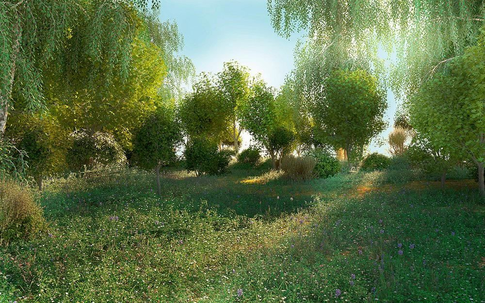Free 3D Scene Forest glade | Oleg Hizhko Software: Maxon Cinema 4D