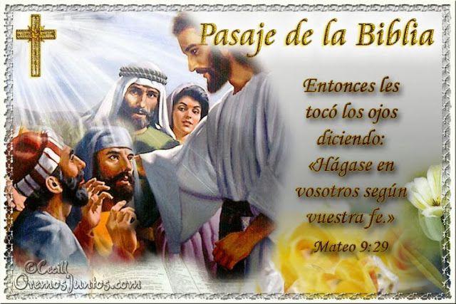 Vidas Santas: Santo Evangelio según san Mateo 9:29