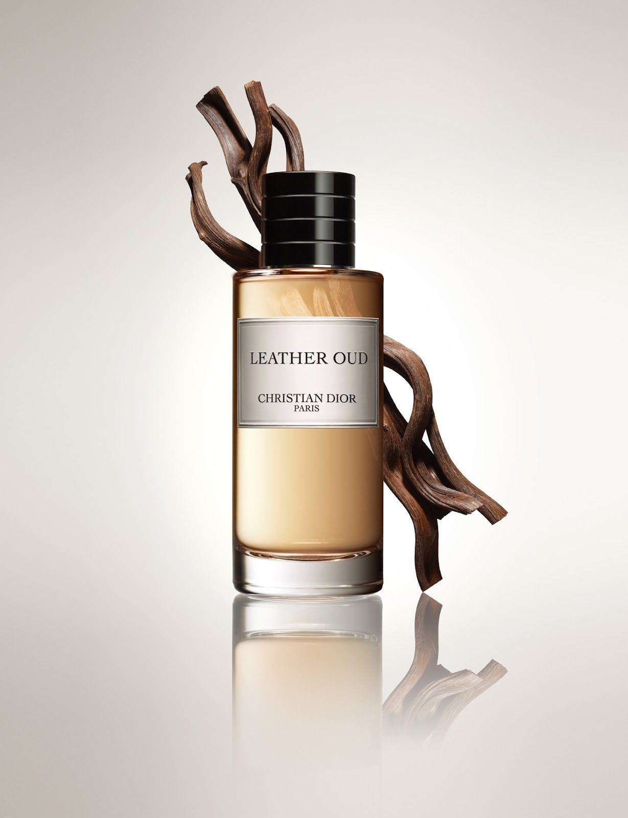 Leather Oud By Christian Dior Collection Privee Fragrance Beauty Christmas Parfumeur Produits De Beaute Parfum