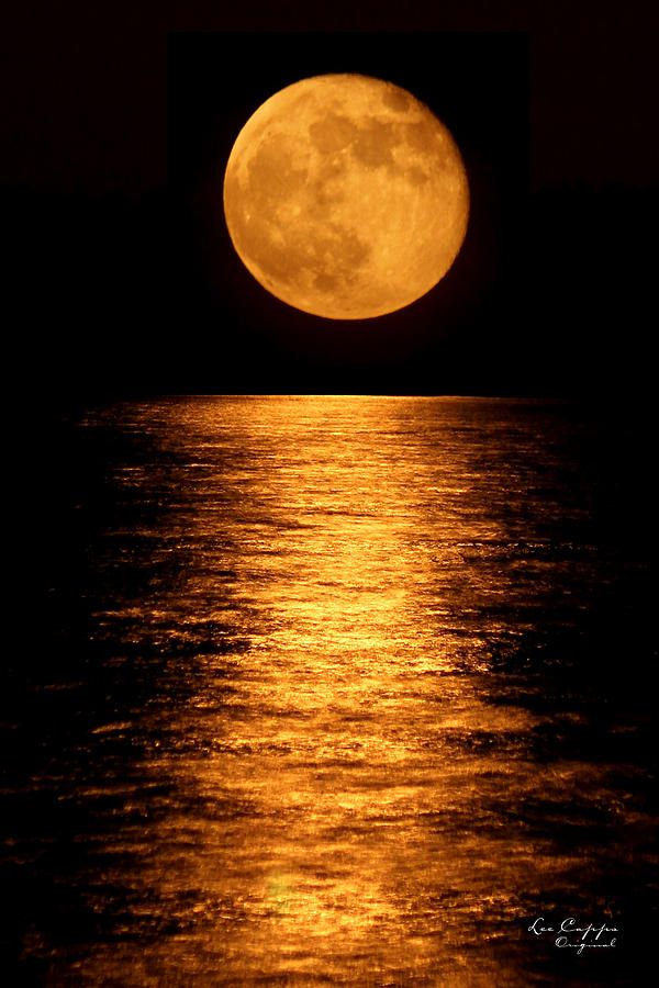 Full Harvest Moon By Lee Capps Original Moon Photography Moon Art Beautiful Moon