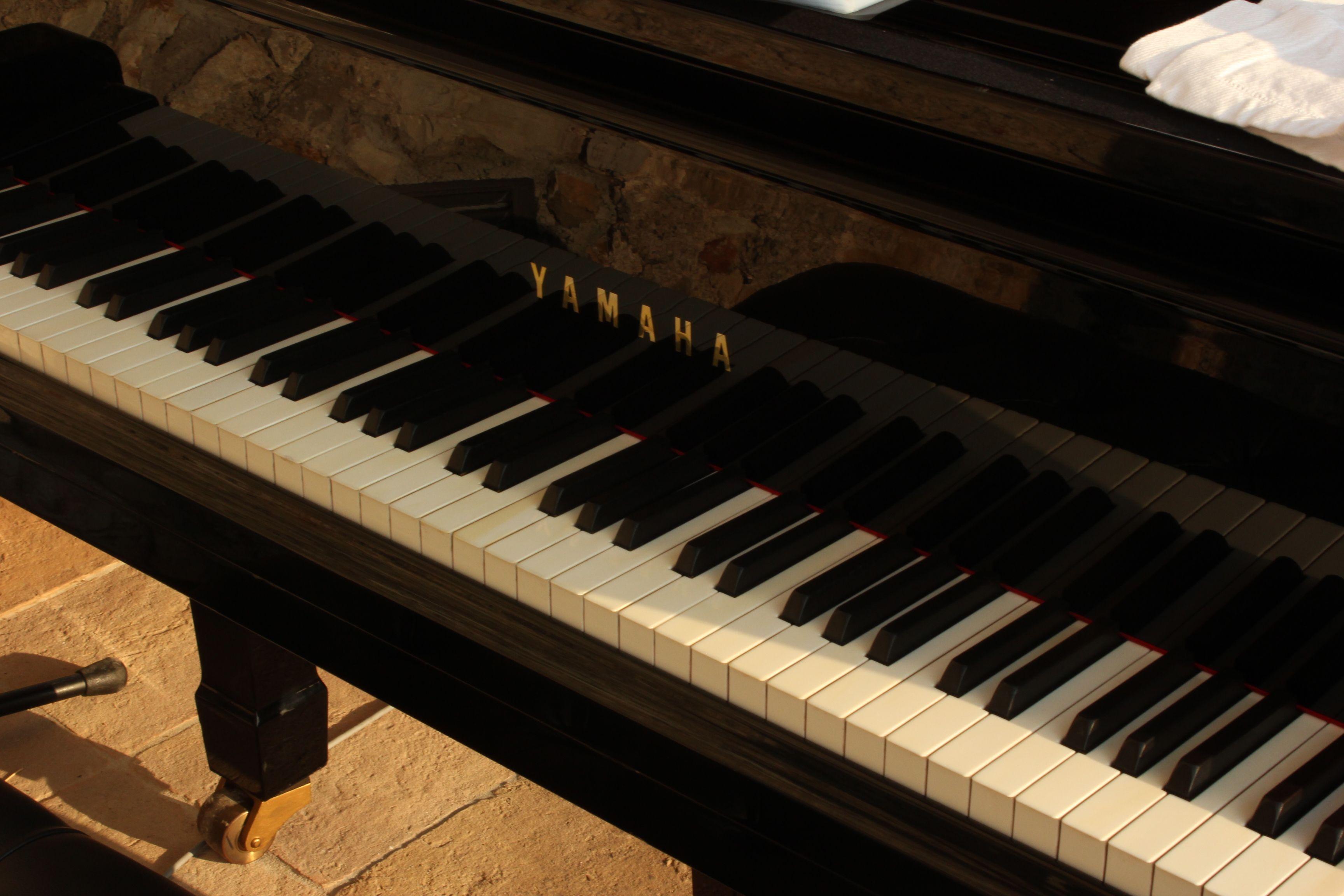 """""""Ora tu pensa: un pianoforte. I tasti iniziano. I tasti finiscono. Tu sai che sono 88, su questo nessuno può fregarti. Non sono infiniti, loro. Tu, sei infinito, e dentro quei tasti, infinita è la musica che puoi fare. Loro sono 88. Tu sei infinito""""  (Alessandro Baricco)"""