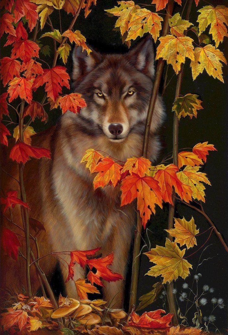 Картины девушки и волки