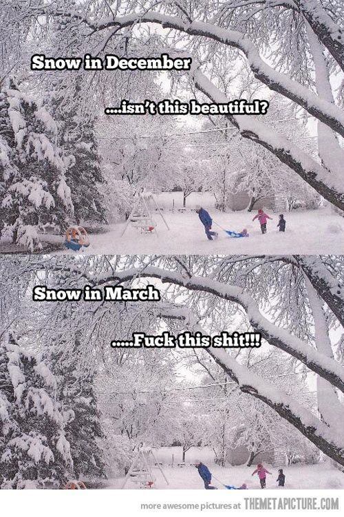 This is so Northern Minnesota. Got this from Cailea who