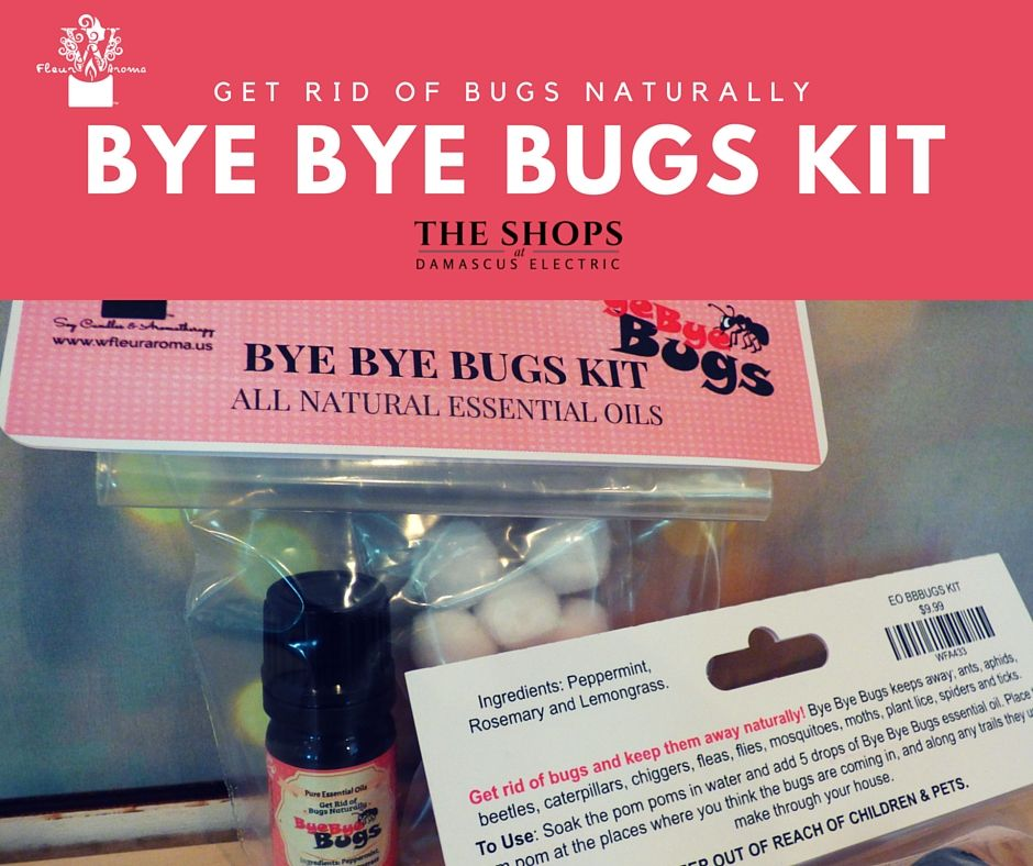 Coming Soon Essential Oils Bugs Be Gone Essential Oils Bugs