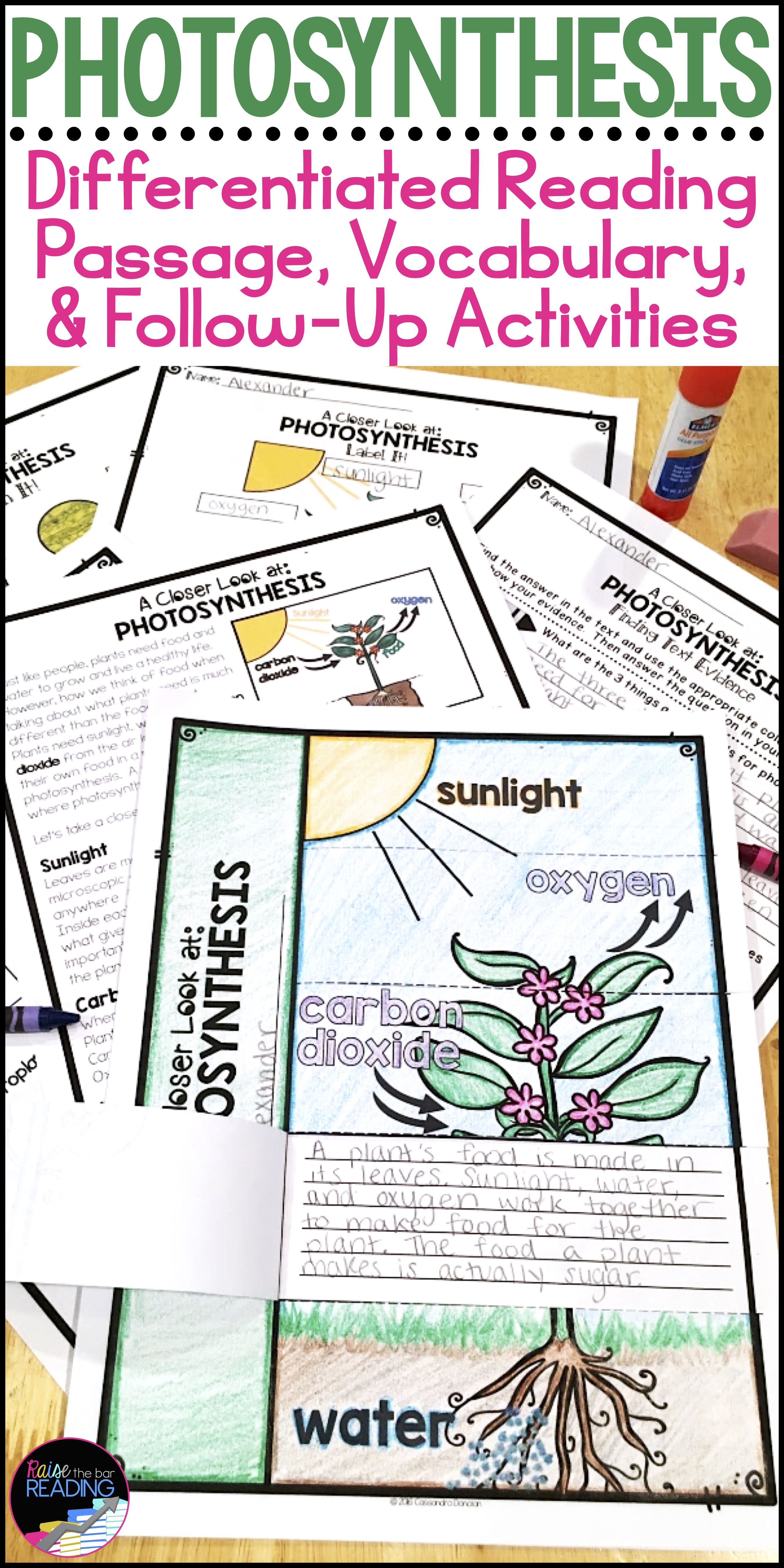 Differentiated Photosynthesis Reading Passage & Activities