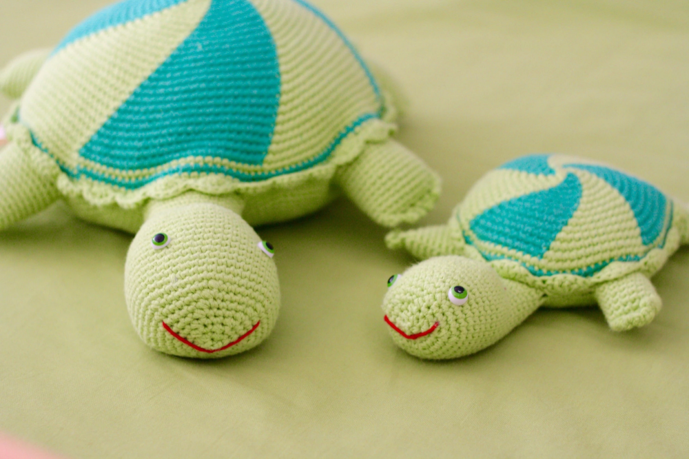 Thelma and Louse the turtles