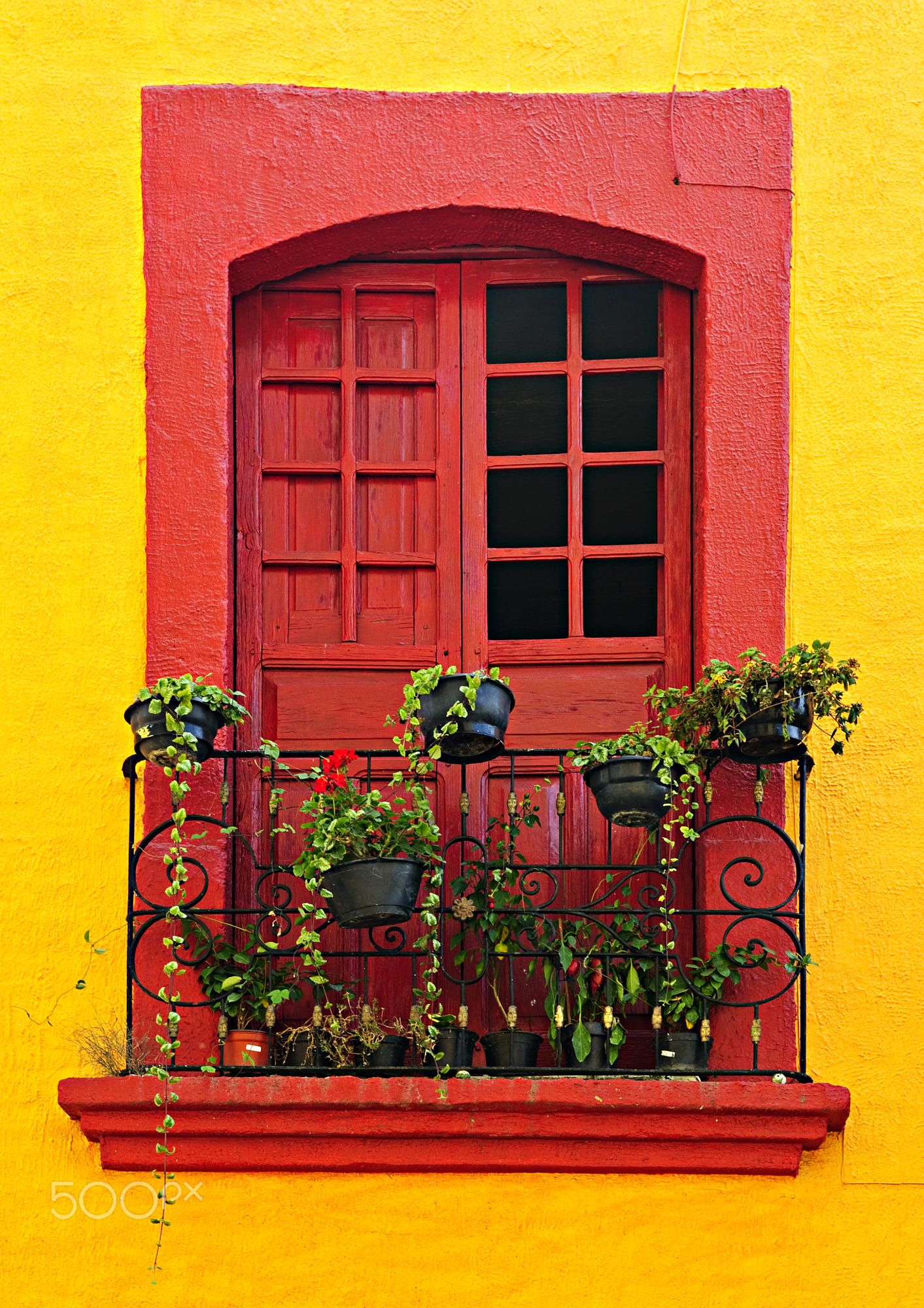 Dipingere Le Porte Di Casa red painted window with plants and wrought iron railing in