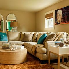 contemporary living room, teal accents