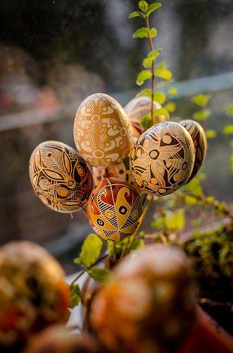 ukrainian easter egg. Ornamental Easter egg made of real chicken egg. #Easter_eggs #nature #easter #decorate #Spring #easter #eastereggs #pysanka #ukrainian #egg # Easter_egg #hatbyhand