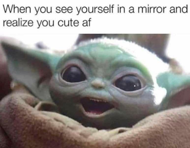 Pin By I Like To Misha Misha On Adorable Yoda Meme Yoda Funny Yoda