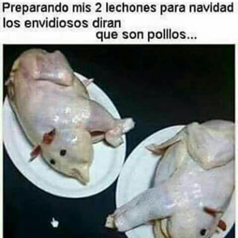 Pin De Azu Leyva En Humor Lechones Cerdo Para Navidad Cerditos