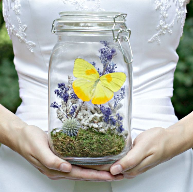 Butterfly Terrarium Kit Mothers Day Gift Wedding Decor Yellow
