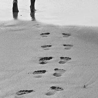 Desejo do dia: pés na areia, cabelos ao vento e sal no corpo. ☀
