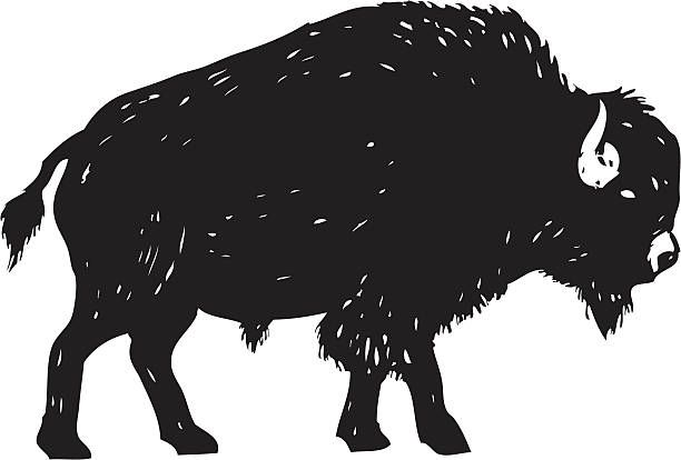 image result for wild west buffalo clipart moonlight marathon 2018 rh pinterest com buffalo clip art silhouette buffalo clipart black and white