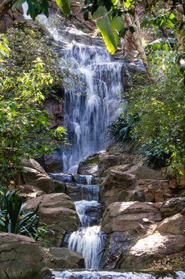 Waterfall Pretoria Botanical Gardens Waterfall Botanical Gardens Outdoor