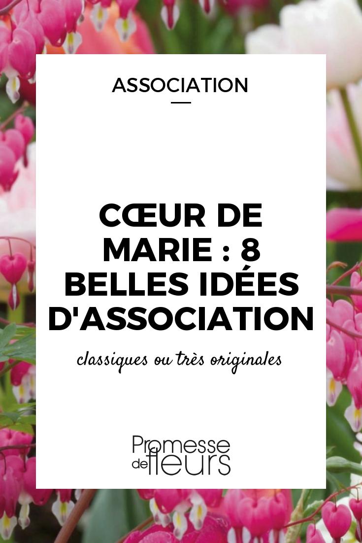 Fleurs Pour Mi Ombre coeur de marie : 8 belles idées d'association   coeur de