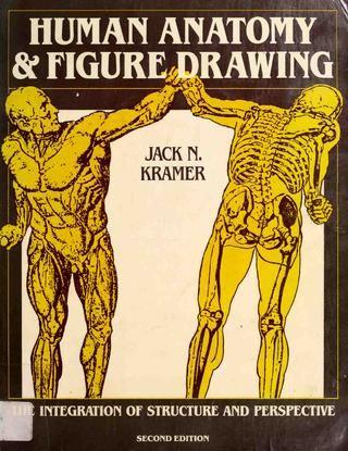 Retrato rostros y expresiones   Dibujo anatomico, Anatomía artística ...