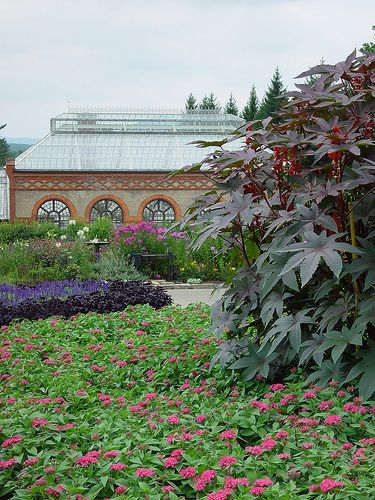 conservatory | Biltmore and gardens | Pinterest | Explore