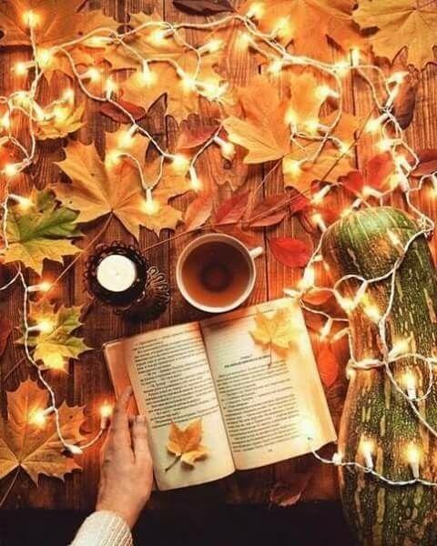 Lecture cocooning en automne | Paysage automne, Deco automne, Fond ecran automne