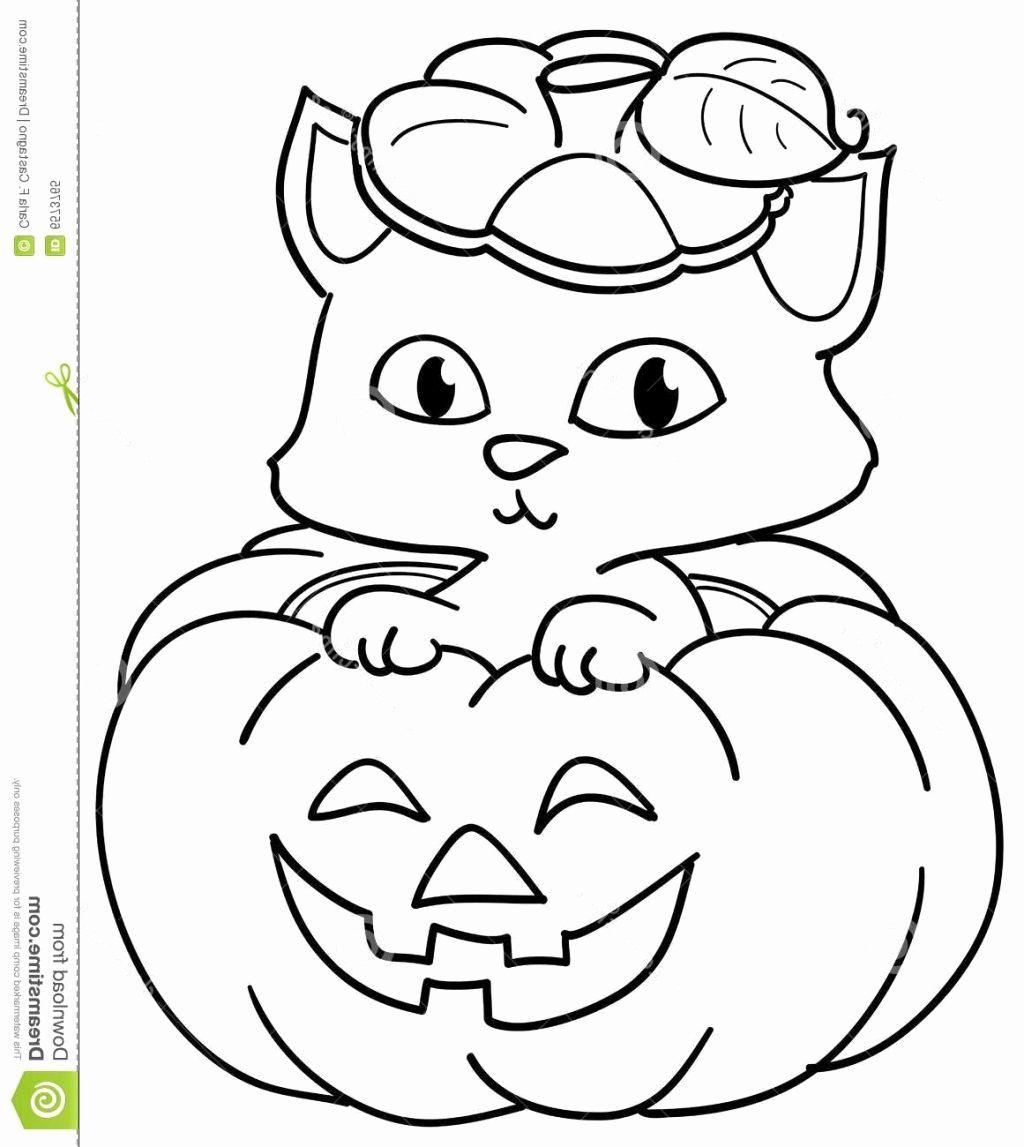 Halloween Pumpkins Coloring Sheets Beautiful Coloring Book Halloween Cat Coloring Pages Pumpkin Coloring Sheet Halloween Coloring Pages Fall Coloring Pages