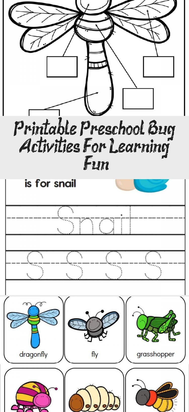 Printable Preschool Bug Activities For Learning Fun In 2020